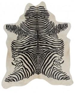 Zebra Espinha fundo Branco
