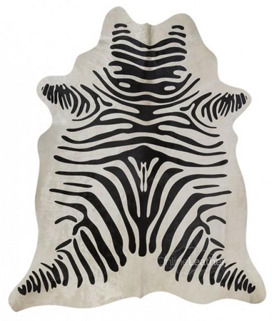 Zebra fundo Branco